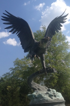 Dothan Alabama Houston County Eagle
