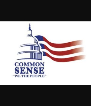 Common Sense We The People